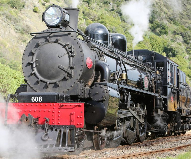 Steam Train Tour