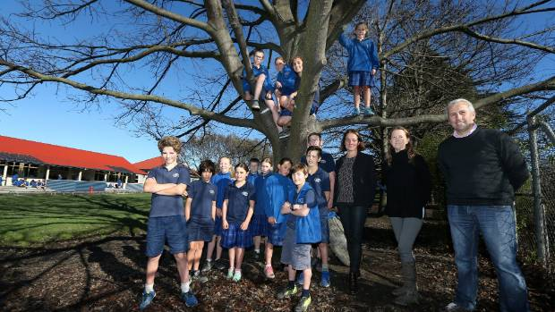 Marlborough Flyer & Port Marlborough Tree Planting For The Next Generation